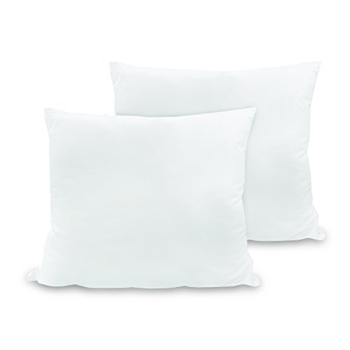 BioPedic Luxurious 28-by-28 Inch Euro Square Pillows, 2-Pack (28 X 28 Euro Pillow)