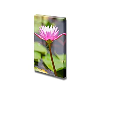 Canvas Prints Wall Art - Pink Lotus and Dragonfly Make Heart Shape | Modern Wall Decor/Home Decoration Stretched Gallery Canvas Wrap Giclee Print. Ready to Hang - 16