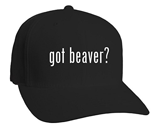 got beaver? Adult Baseball Hat, Black, Small/Medium