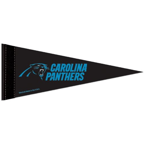 NFL Carolina Panthers WCR53876012 Carded Mini Pennant, 4