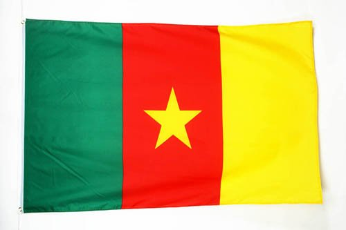 ' - CAMEROONIAN FLAGS 90 x 150 cm - BANNER 3x5 ft - AZ FLAG ()