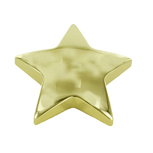 Plated Star Paperweight - Gold Star Paperweight