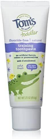 Tom's of Maine Toddler Fluoride-free Natural Training Toothpaste Mild Fruit -- 1.75 Oz By Tom's of Maine by Tom's of Maine