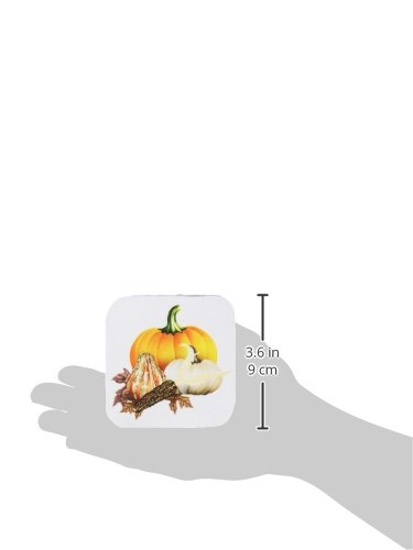 3dRose cst/_11640/_2 Colorful Pumpkins Set of 8 Corn and Autumn Leaves to Celebrate The Fall Harvest Soft Coasters