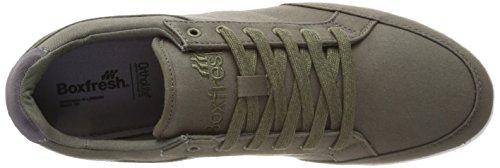 Boxfresh Creeland Grün Khaki Herren Sneaker TTUnrfx