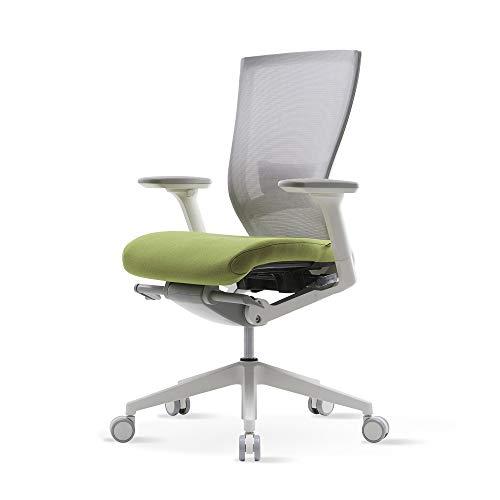 SIDIZ T50 Home&Office Multifunction Ergonomic Swivel Task/Executive Chair (TNB500LDA): High Back, Mesh Back w/Lumbar Support, 3-Way Adjustable Arms, Adjustable Seat Slide/Slope (Green)