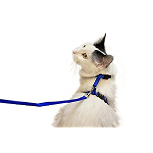 Juvale Cat Harness – Small Pet Harness Leash Adjustable Nylon Rope Strap Kitty Harness and Leash Collar 4.5 Inches, for Cats and Small Dogs – 55 Inches Long