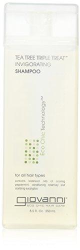 Giovanni Invigorating Shampoo, Tea Tree Triple Treat, 8.5-Ounce Bottles (Pack of 3)