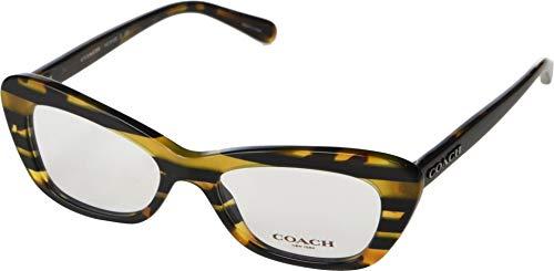 COACH Women's 0HC6108 Black Amber/Varsity Stripe One Size (Women Eyeglasses Frame Cat)