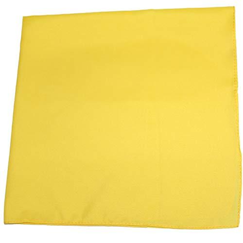 Set of 12 Solid 100% Polyester Unisex Bandanas  One Dozen, 22 in, -