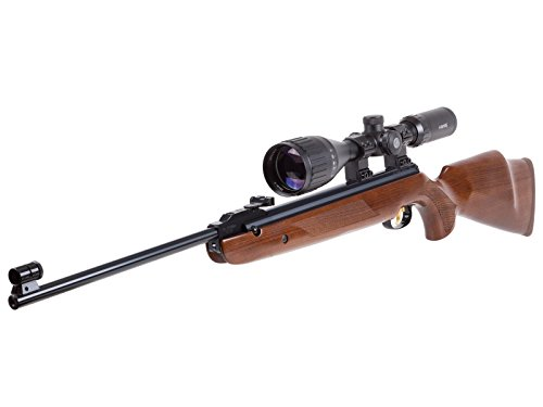 Beeman R9 Elite Series Combo air rifle