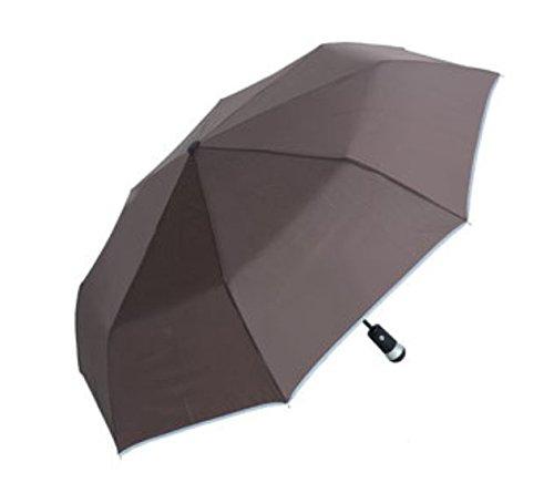 LED Luminous Automatic Umbrella Women Men Rain Umbrellas Travel Light Weight Rain Gear by ShopIdea (Ivy Dimmer)