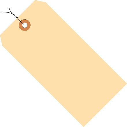 int Cardstock Pre Wired Shipping Tag, 4-3/4