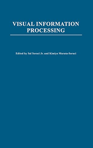 Visual Information Processing (Perspectives on Fundamental Processes in Intellectual Functioning)