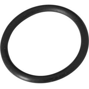 Summer Escapes Filter Retainer O Ring product image