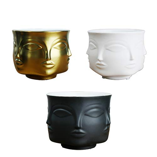 (Succulent Creative Planter Ceramic Small Decorative Vase Flower Pot Succulents Indoor Plant Face Pot for Home or Office (Set of 3))
