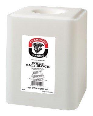 Plain Wht Salt Block 50#