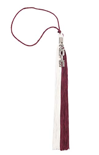 Two-Colored Graduation Tassel with Gold/Silver 2019 Year Charm