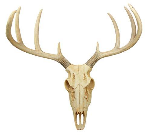 (Rustic Hunter Rack Deer Skull Antler Wall Plaque Decor 10 Point Buck Figurine #EB06)
