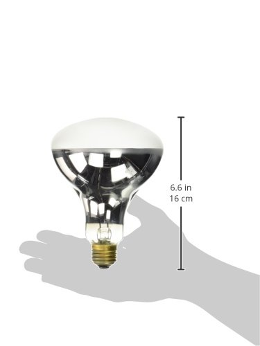 exo terra solar glo high intensity self ballasted uv heat mercury vapor lamp new ebay. Black Bedroom Furniture Sets. Home Design Ideas