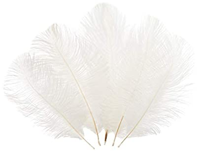 Sowder Ostrich Feathers Plume for Wedding Centerpieces Home Decoration