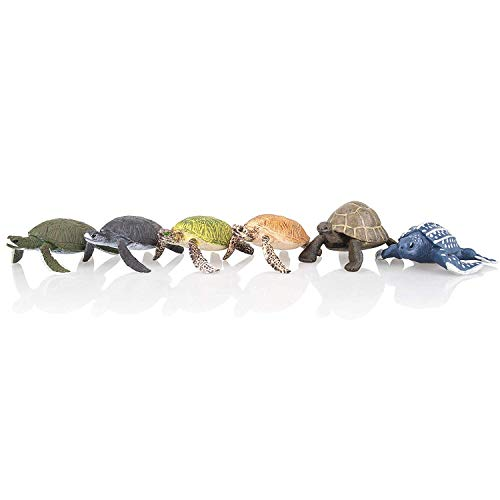 TOYMANY 6PCS Realistic Sea Turtle Figurines, Plastic Ocean Sea Animals Figures Set Includes Different Varieties of Turtles, Educational Toy Cake Toppers Christmas Birthday Gift for Kids -