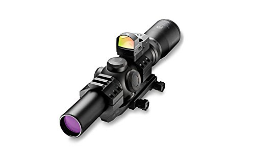 Burris Scope with Fastfire