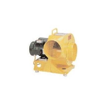 Amazon.com: Soplador eléctrico de velocidad con GFI Cable de ...