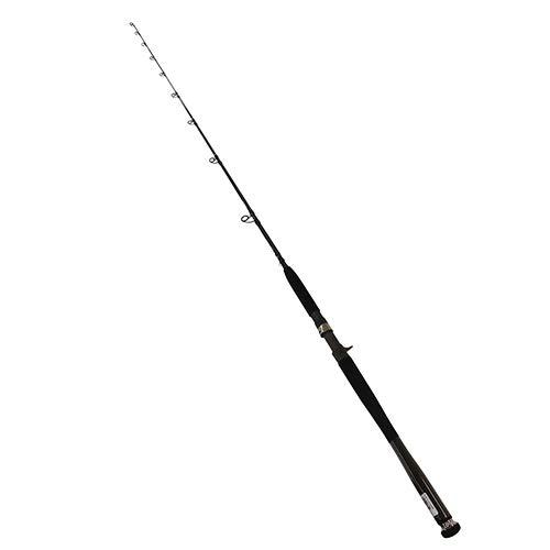 Daiwa Saltiga SAG-J70MF Saltwater Spinning/Jigging Fishing Rod