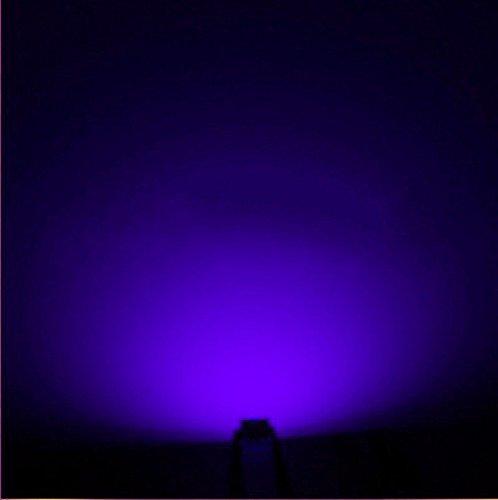 0603 Led Lights in Florida - 7