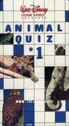 Animal Quiz #1