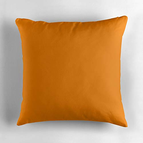 University of Tennessee OrangeSquare Throw Pillow Case Decorative Cushion Cover Pillowcase Cushion Case for Sofa Bed Chair Auto Seat 18x18 Inch