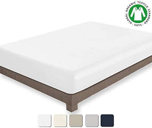 BIOWEAVES 100% Organic Cotton 1 Fitted Sheet Only, 300 Thread Count Soft Sateen Weave GOTS Certified with deep Pockets (Queen, White) ()