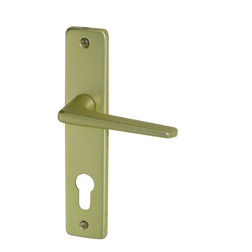 DT 2000 207035 Door Handle on Backplate Aluminium Champagne Colour ()