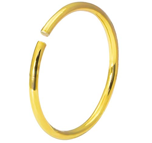(Forbidden Body Jewelry 20g 8mm Surgical Steel Titanium IP Plated Gold Nose Hoop (Single) )