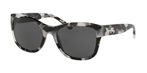 (Sunglasses Coach HC 8243 553087 COOKIES AND CREAM TORT )
