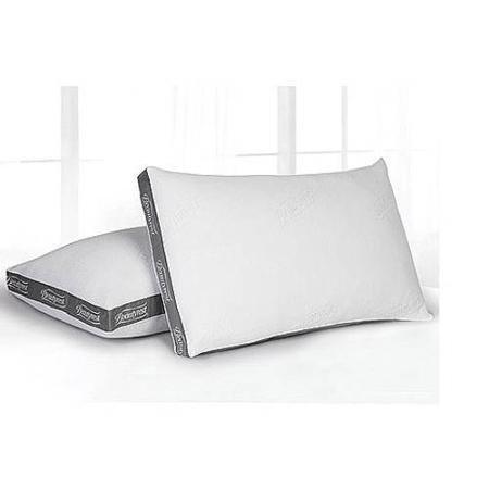 Beautyrest Luxury Spa Resort Pillow, STANDARD, Set of 2
