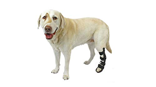 Walkin' Pet Splint for Dogs, Canine Rear Leg Splint with Foam Inserts for a More Custom Fit