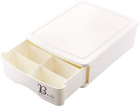 RUIXIANG Schubladenboxen Unterwäsche-Aufbewahrungsbox Kleiderschrank Socken Finishing Box Kunststoff BH Unterwäsche Aufbewahrungsbox Weiß10Gitter