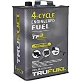 ARNOLD ORATION 6527206 4-Cycle Fuel