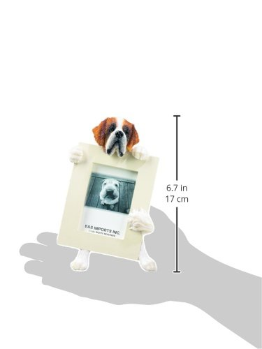 Saint Bernard Picture Frame Holds Your Favorite 2.5 by 3.5 Inch Photo, Hand Painted Realistic Looking Saint Bernard Stands 6 Inches Tall Holding Beautifully Crafted Frame, Unique and Special Saint Bernard Gifts for Saint Bernard Owners by E&S Pets (Image #1)