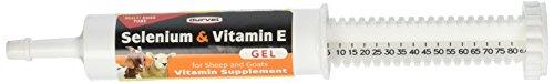 Durvet Sheep & Goat Selenium Vitamin E Gel, 80ml (3 Pack) (Goat Paste)