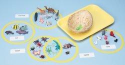 Animal Family Classification Kit