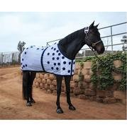 Buy magnetic therapy horse