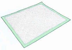 Vanguard Disposable Underpads, 28'' x 36'' - 100/Case