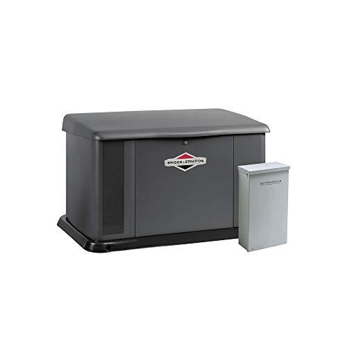 Briggs & Stratton 40584 20kW Generator with Aluminum Enclosure and 200 Amp Symphony II - Generator Aluminum Enclosure
