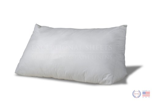 Reading Wedge Bed Pillows| Two Fill Options to Choose From -
