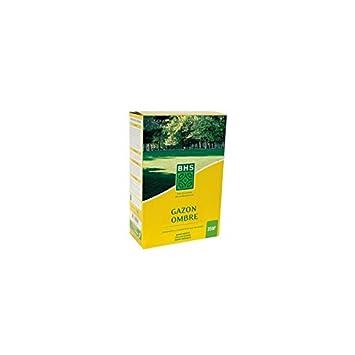 BHS Gazon ombre - Boîte de 1 kg: Amazon.es: Jardín