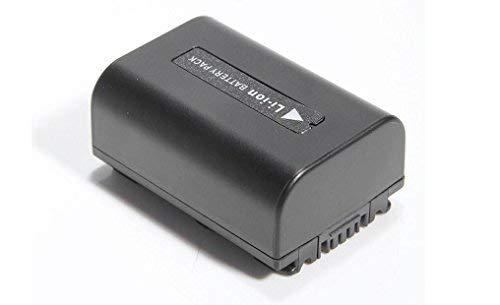 Globalsaving Battery for Sony handycam camcorder HDR-XR105E HDR-XR106 HDR-XR106E HDR-XR150 li-ion battery