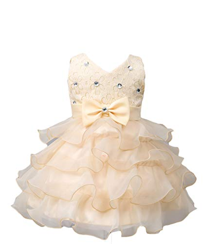 Baby Flower Girl Sleeveless Lace Special Occasion Dress Ruffles Embroidered Wedding Birthday Layered Cake Dresses Champagne Size 18-24 Months Tulle Tutu Ball Gown for Infant Party (Cham 02 XL)